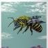 bee - facing left