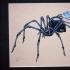 spider (handbill)
