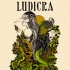 Ludicra	$30 	$95 	daviddandrea-ludicra