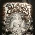 Black Crowes - Music Hall  1995