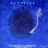 dj shadow blue velvet hand