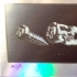 Screw Evolution - Black on Foil