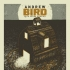 Andrew Bird
