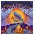Coachella '10