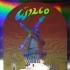 Wilco '07, Foil