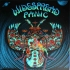 Widespread Panic NYE 12 foil