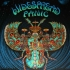Widespread Panic NYE 12