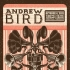 Andrew Bird - Knoxville, TN