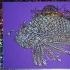 fish psychedelic sparkle foil purple left