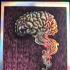 Smoking Brain, Purple