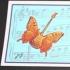 Music Butterflies, Orange on Blue