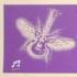 Music Butterflies, Solid Purple on Tan