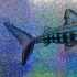 There's only one - Whale Shark, Art Print, Sparkle