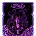 311 SW tour poster purple variant
