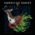 American Babies Tour (signed by Tommy Hamilton)