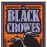 Black Crowes 2009